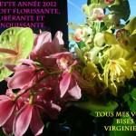 Voeux2012VirginieGreiner