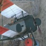 Pilote à l'edelweiss