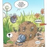 Les insectes en BD : le bousier à l'action