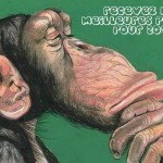 BODARD-CHIMPANZE-2013