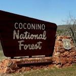 Coconino County 1.jpg