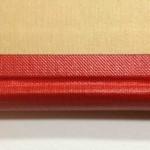 """Dos rouge tissu """"plastifié"""" (présent sur certains exemplaires)."""