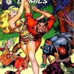 « Tiger Girl » de Matt Baker apparut dans Fight Comics n°32, avec son héroïne au slip en peau de… tigre, bien sûr ! Comme quoi, c'est souvent les sous-vêtements qui font la différence chez ces héroïnes…