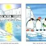 Les Manchots sont de sacrés pingouins première planche