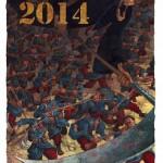 le roux voeux 2014