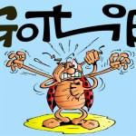 gotlib_coccinelle