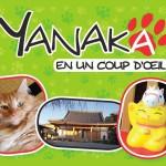 Yanaka