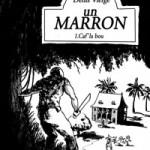 marron-ico