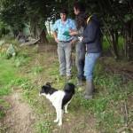 Kees Maris et Lenon chez Eric Broussouloux, éleveur de porcs.