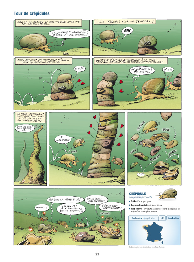 Les animaux marins page 23