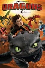 Dragons T1 : Tombé du ciel couverture