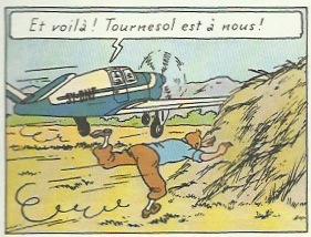 Extraits de « L'Affaire Tournesol » page 41.