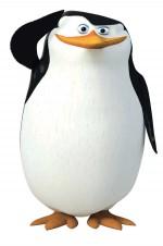 Les pingouins de madagasca Pingouin Soldat