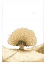 l'arbre de Nora