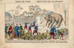 Abattage des éléphants du Jardin des Plantes (Paris, 1870)