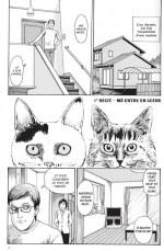 Le-Journal-des-Chats-de-Junji-Ito-nouveau