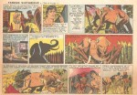 Tarzan Lubbers 2