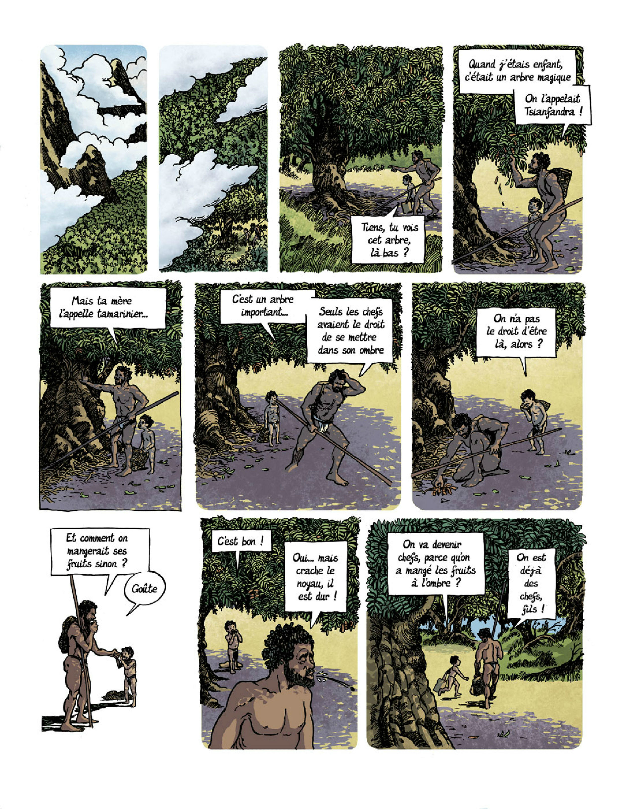 Planche 13 arbre