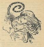 Illustration pour Caméra 34, au n° 97.