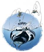 Raie animaux marins en BD