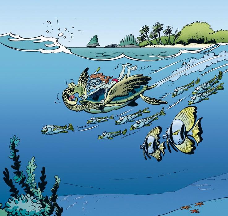 quatrieme de couverture les animaux marins
