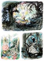 Dans la forêt sombre et mystérieuse p 60