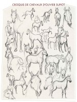 Le cheval qui ne voulait plus être une œuvre d'art étude chevaux d'Olivier Supiot