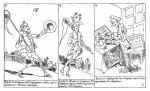 « Histoire de M. Cryptogame » par Cham (France).