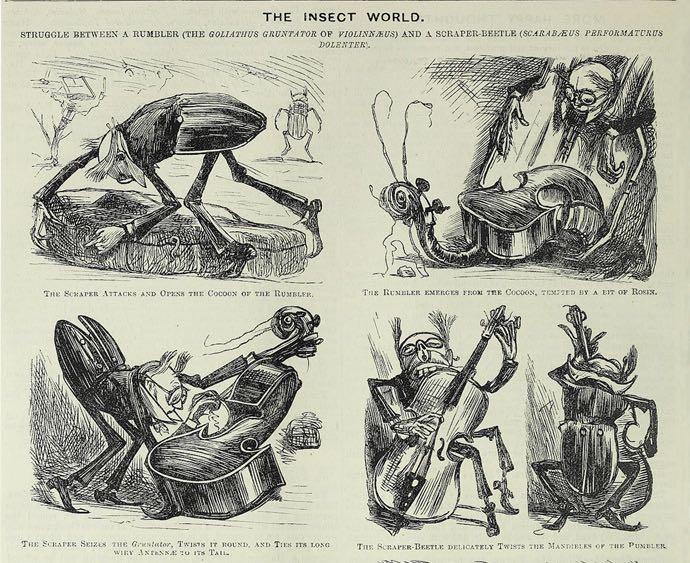 Une histoire en images de George du Maurier, dans Punch.