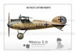 Détails du biplan Albatros D.V., avion de chasse allemand.