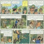 « Tintin et les Picaros » page 29.