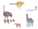 Quelques animaux de la savane