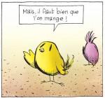 Un oiseau affamé