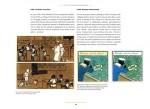 Les Tribulations de Tintin au Congo A