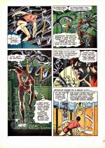 « Magnus, Robot Fighter 4000 AD » par Russ Manning et Paul Newman.