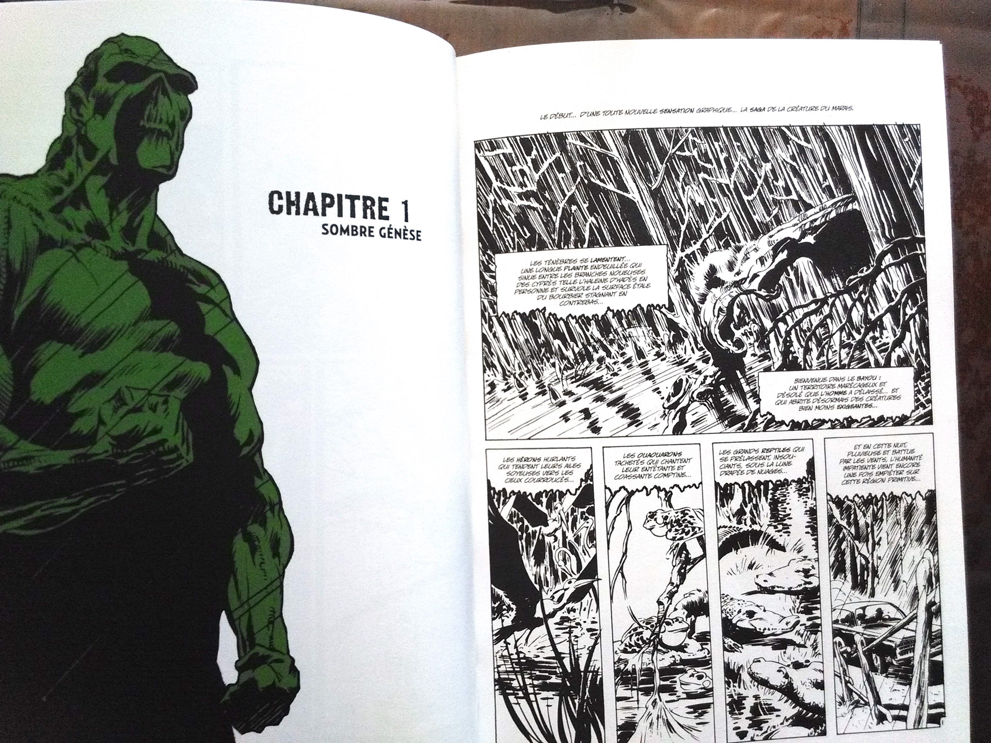 Swamp thing ch 2