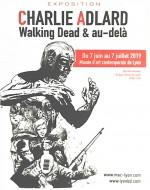 Wlaking Dead affiche net