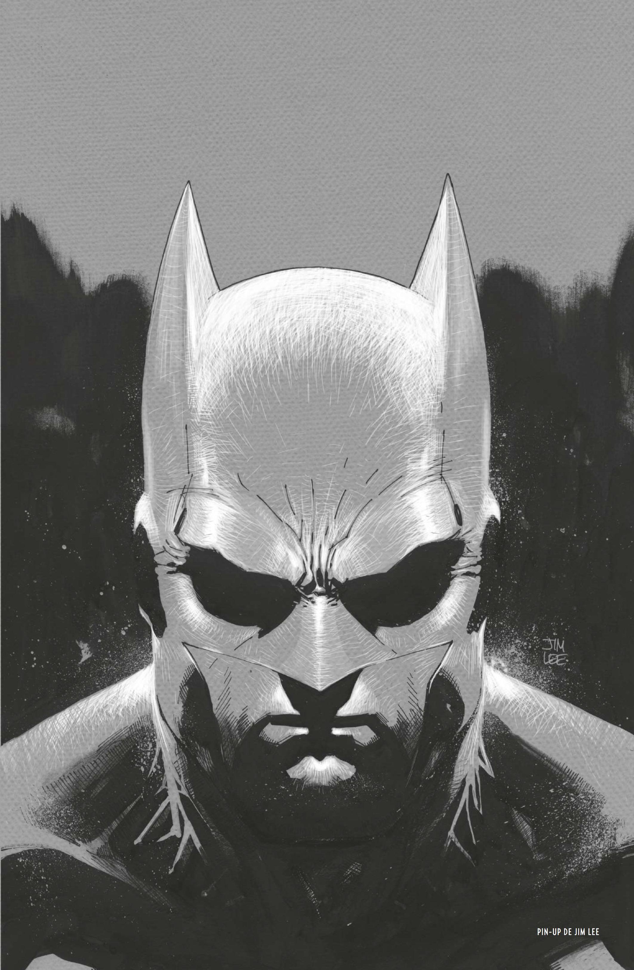 Batman 80 ans Jim Lee pin Up
