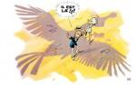 L'ombre de l'oiseau razibus