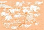 Le Zoo des animaux disparus pages de garde