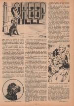« Sheep » Fillette n° 312 (10/07/1952).
