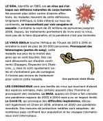 Les grandes pandémies de l'histoire.