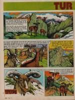 «Tur le bouquetin » : Fripounet n°51 (10/12/1974).