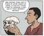 Mégafauna p.13 case 2