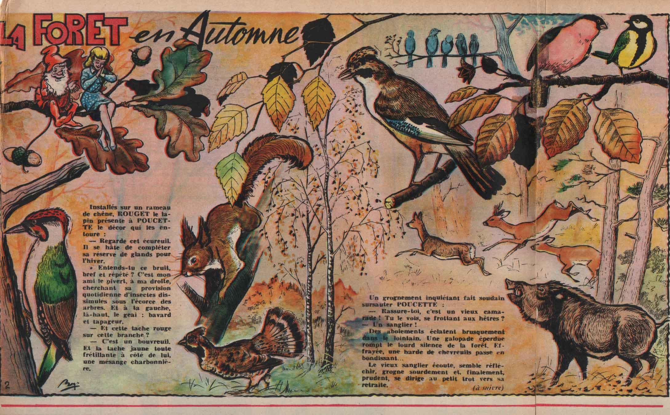 « La Forêt en automne » Line n° 87 (09/11/1956).